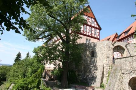Bodenstein